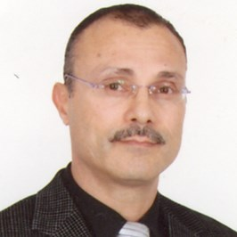 Taoufik Ben Hamouda (Sales & Marketing Management)
